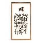 Small Seeds of Gratitude will produce a Harvest of Hope – Thanksgiving 2020